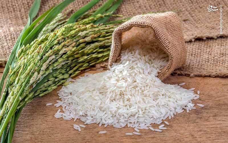دولت یارانه «برنج» میدهد