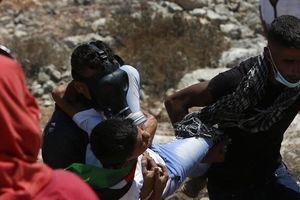 ۱۵۳ فلسطینی در درگیری با نظامیان رژیم صهیونیستی زخمی شدند