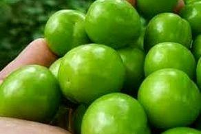 خوردن گوجه سبز برای این 3 گروه ممنوع!