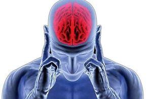 این میوه از سکته مغزی پیشگیری می کند!