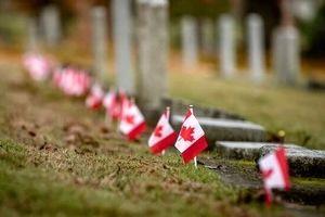 سکوت سنگین مدعیان حقوق بشر در قبال رسوایی کانادا!