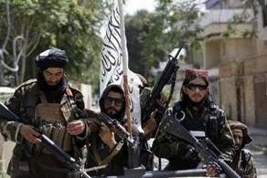 آخرین اخبار از پنجشیر/ ضربههای کاری همراه با تلفات زیاد به طالبان وارد شد