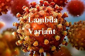 جزییاتی کامل از سویه لامبدا ویروس کرونا
