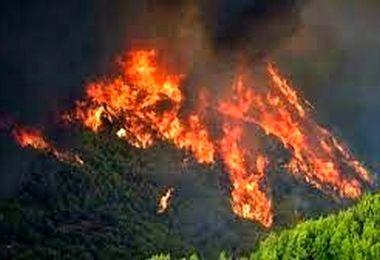 گرما بلای جان مراکز تاریخی شد/آتش سهمگین به جان مراکز مهم المپیک افتاد