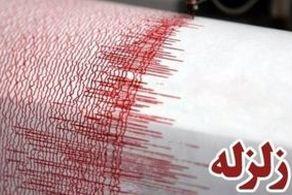 وقوع مهیب زلزله 6.3 ریشتری