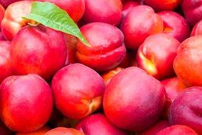 خواص باورنکردنی این میوه تابستانی/به راحتی فشار خون خود را تنظیم کنید!