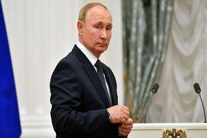 جانشین پوتین چه کسی خواهد بود؟/ رئیسجمهور روسیه چه نقشهای در سر دارد؟